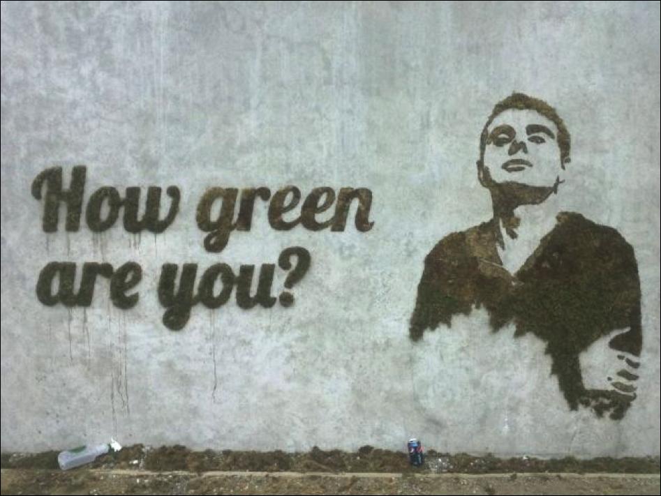 Sustainable Art: Moss Graffiti (DIY)
