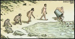 bizarro-evolution