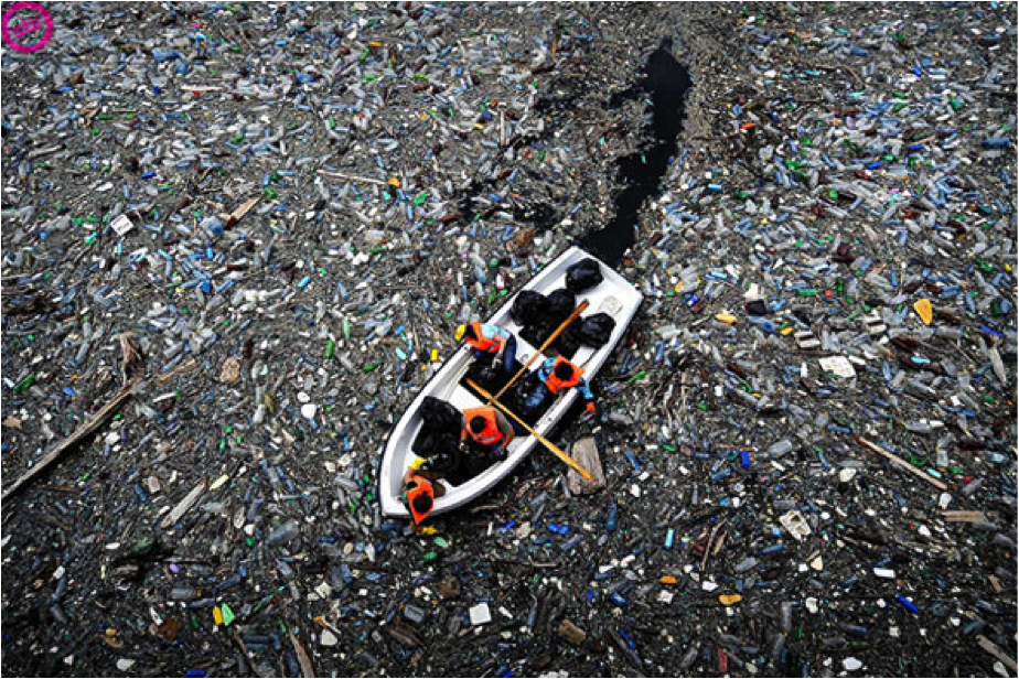Searious Business: Making Businesses Reduce Their Own Plastic Waste