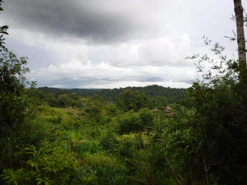Onderzoek naar duurzaamheid in Papoea Nieuw Guinea